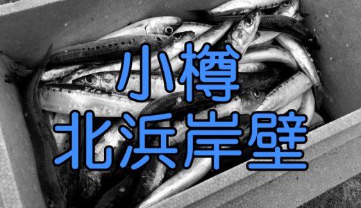 【7・25】小樽北浜岸壁の場所案内と今回はサバを狙いに行く。