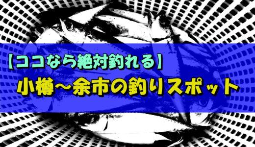 【ココなら絶対釣れる】小樽~余市のオススメ釣りスポット!