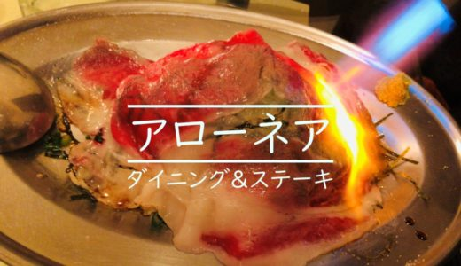 【個室完備で合コンやお子様連れにピッタリ!】札幌すすきのアローネアを食レポ