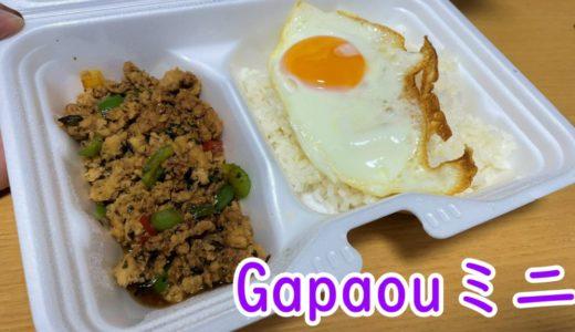 Gapaoumミニ|アジア料理が500円~楽しめる大通り西11丁目直結のお店!